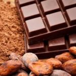 Epicatechins, Chocolate - Myostatin Inhibitors