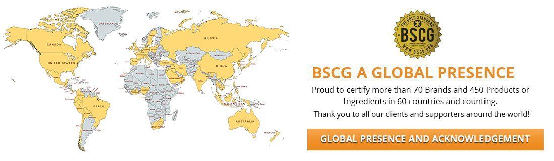 bscg-banner-map2